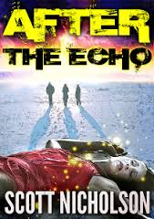 After the Shock: Echo